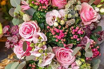 promotions_123-Fleurs
