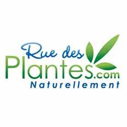 rue+des+plantes