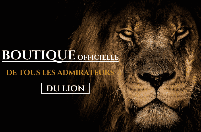 promotions lion-royaume
